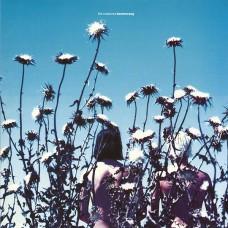 THE CREATURES - BOOMERANG - LP UK 1989 - EXCELLENT