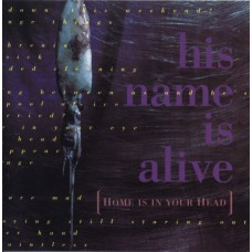 HIS NAME IS ALIVE - HOME IS IN YOUR HEAD - LP UK 1991 - 4AD - NEAR MINT