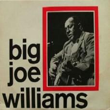 BIG JOE WILLIAMS - BIG JOE WILLIAMS - LP UK 1966 - EXCELLENT+