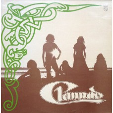 CLANNAD - CLANNAD - LP 1973 IRELAND - ORIGINAL IN TEXTURED SLEEVE - FANTASTIC CONDITION - NEAR MINT