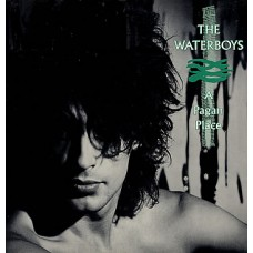 WATERBOYS - A PAGAN PLACE - LP UK 1986 - NEAR MINT