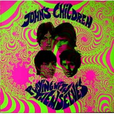 JOHN'S CHILDREN - PLAYING WITH THEMSELVES - MINI LP 1990 - EXCELLENT