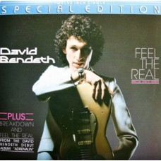 "DAVID BENDETH - FEEL THE REAL - 12"" 1979 - NEAR MINT"